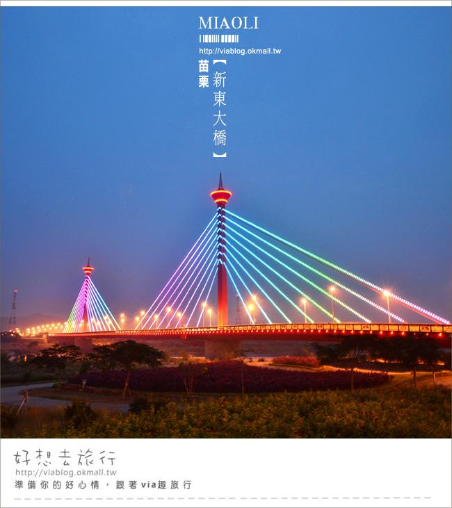 【苗栗夜景】新東大橋~苗栗的美麗夜景!彩虹般繽紛的斜張橋!