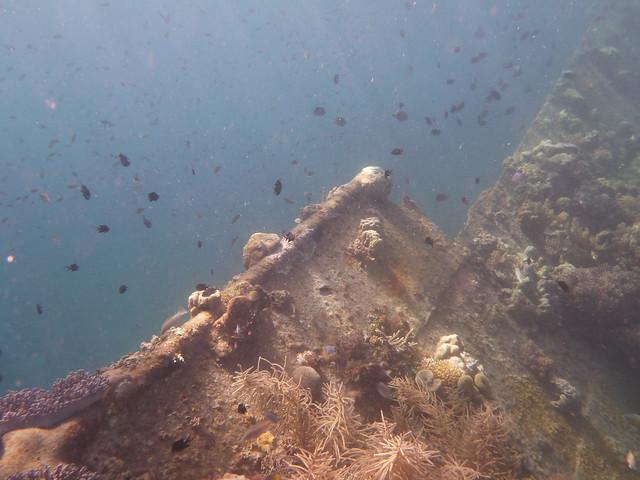 快到船尾時我想說看一下甲板是怎生模樣吧於是游到另一側