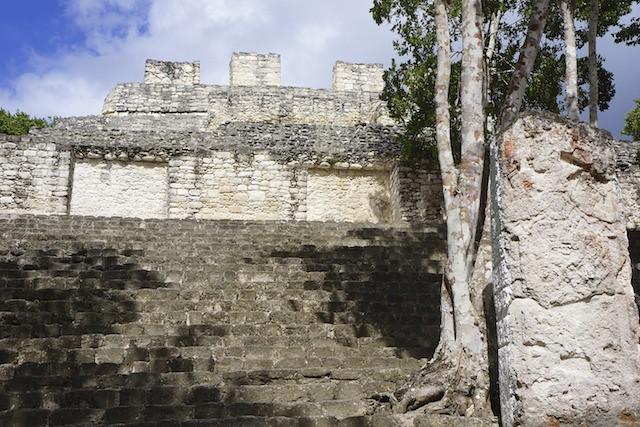 Calakmul 29