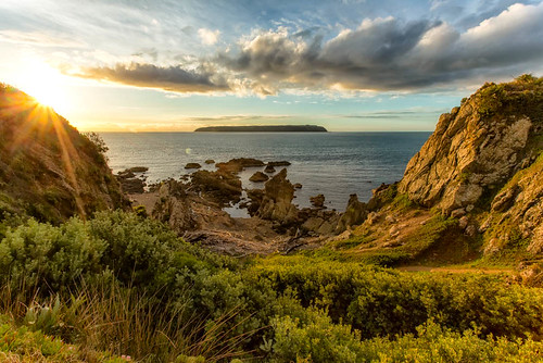 sunset sea newzealand seascape nature clouds landscape sundown wellington titahibay sxbaird stewartbaird