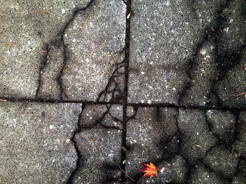 nagasidewalk by Nature Morte