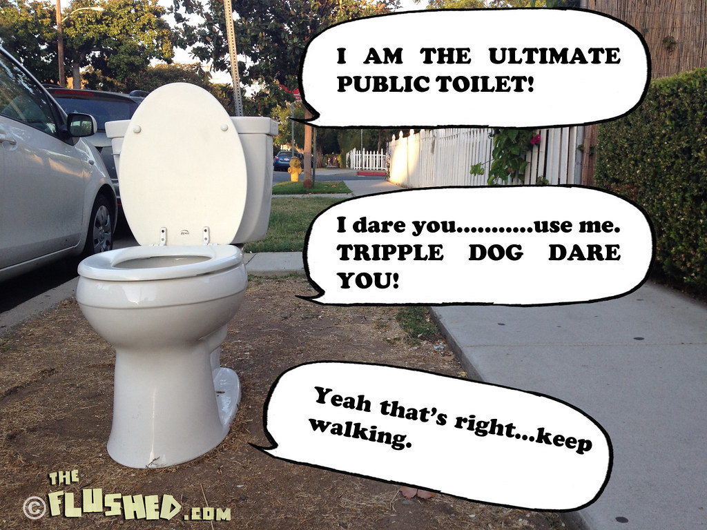 Public jerk toilet