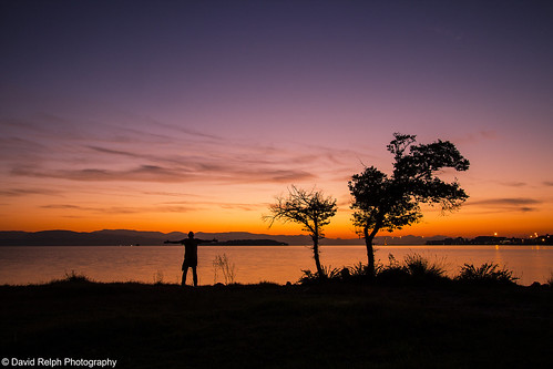 morning sea seascape tree silhouette sunrise canon greece corfu 600d davidrelph