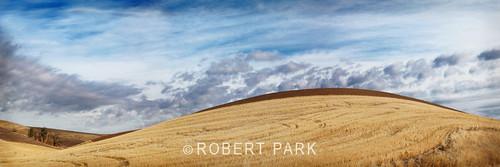 """""""Palouse swirl"""" By Robert Park http://www.robert-park.com by Robert Park Photography"""