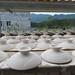 couvercle de gaiwan à Longquan