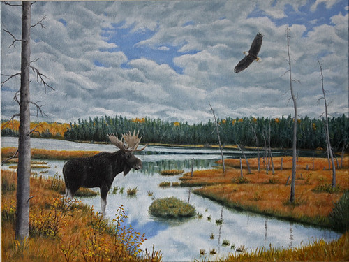 Moose in Bog by Sid's art