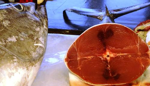 俗稱串仔的黃鰭鮪,擁有鮮黃的背鰭、臀鰭,肉質清淡不如黑鮪鮮美。廖律清攝。
