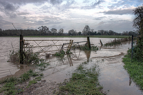 Flooded farmland - Hallow, Worcester