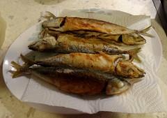 mackerel(0.0), trout(0.0), cod(0.0), forage fish(0.0), capelin(0.0), sardine(0.0), milkfish(0.0), smoked fish(1.0), fish(1.0), fish(1.0), seafood(1.0), food(1.0), dish(1.0), shishamo(1.0), cuisine(1.0),