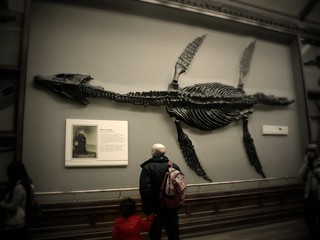 father, daughter and Pliosaur fossil