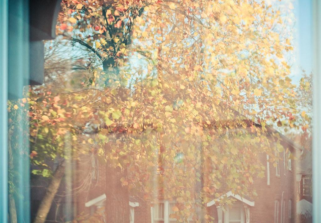 otoño {8}