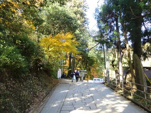 20121203高尾山019