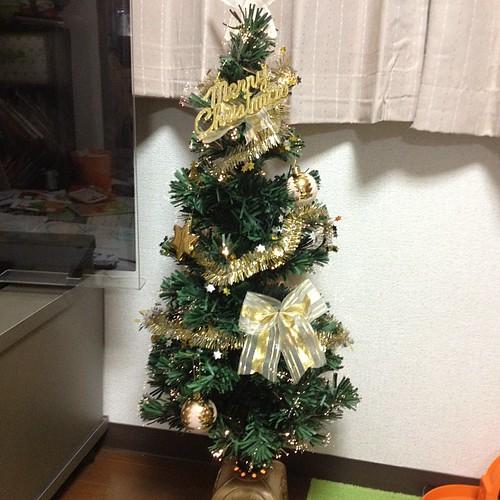 我が家のツリー!