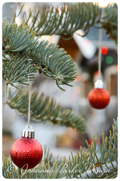 Johanna-Parker-Outdoor-Tree-Ornaments