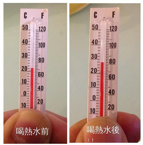 體溫恆定活動