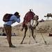 Biking to Saqqara pyramids