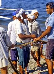Alexandria, Fishermen at work