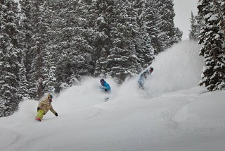 Aspen / Jeremy Swanson photo