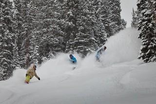 Aspen / Jeremy Swanson photo