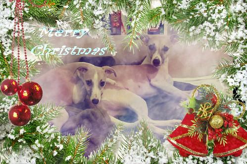 Weihnachten2012Chinaros