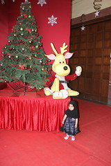 The Xmas Tree And Nerjis Asif Shakir by firoze shakir photographerno1