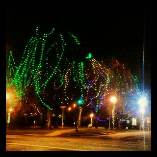 #christmaslights #Christmas #newengland #massachusetts #sopretty #colorful #trees