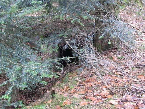 marcher de noel kayserberg 2012 005