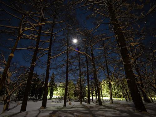 夜のゲレンデ-6