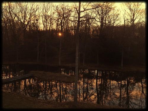 uploaded:by=flickrmobile flickriosapp:filter=salamander salamanderfilter