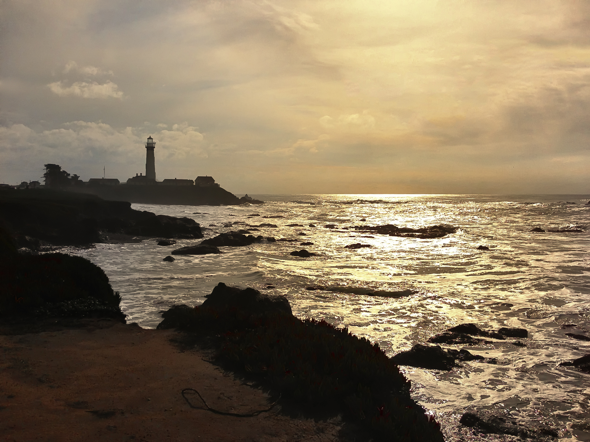 Coastal Light - Pigeon Point
