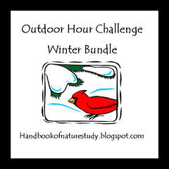 Winter Bundle Button