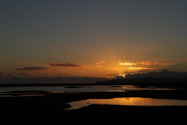 DSC_5471 Sunset at Rye Harbour Nature Reserve