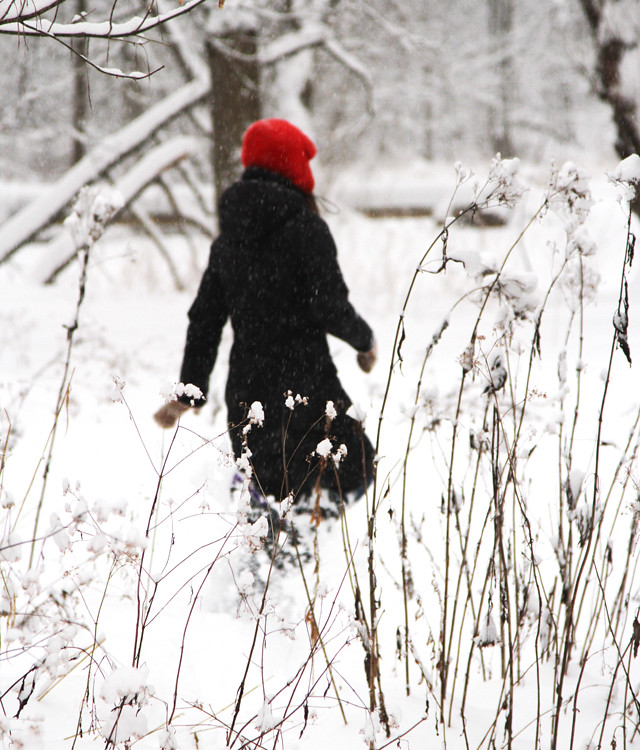 erin snowshoeing