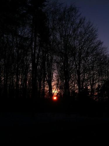 trees sunset centralnewyork madisoncountyny johnnyappleseedfarm eireville