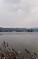 Soleil et reflet au bord de la Moselle
