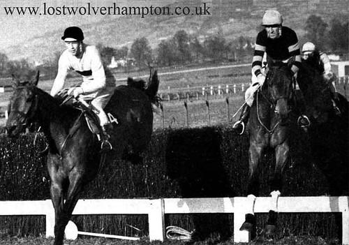 Arkle winner 1964 Gold Cup.