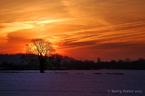 tree sunrise nikon earlymorning eastyorkshire barrypotter yabbadabbadoo eastridingofyorkshire yorkshirewolds nikond40 nikkor18105mm barrypotternet edenmedia barrypotteredenmedia