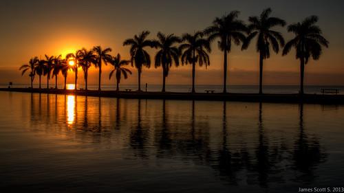 ocean trees usa 3 seascape sunrise canon scott landscape eos james shoot estate unitedstates meetup florida miami mark united iii royal palm atlantic l 5d fl states usm dslr ef 1740mm f4 cutler deering lr4 palmettobay