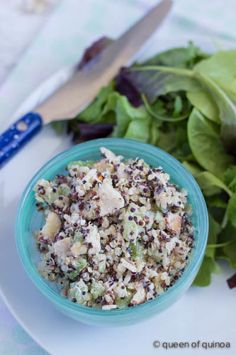 Creamy Coconut Chicken Salad via Queen of Quinoa (@alyssarimmer)