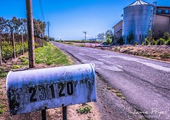 #23120 #postbox #letterbox #cali #photography #nikon #d800 #jamiepryerphotography #travelisamazing #travel #adventure #amazingearth #earthfocus #ig_myshot #discoverglobe #naturegeography #ourplanetdaily #travel_is_amazing #liveoutdoors    @nikon_photograp