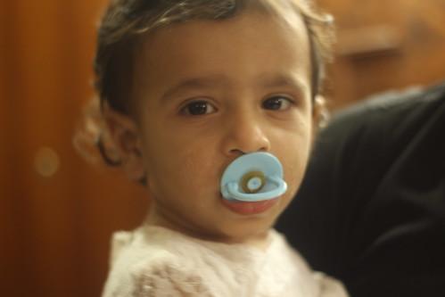 Zinnia My Third Grand Child by firoze shakir photographerno1