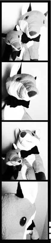 fox photomaton POST
