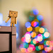 bokeh christmas by alexhophotography