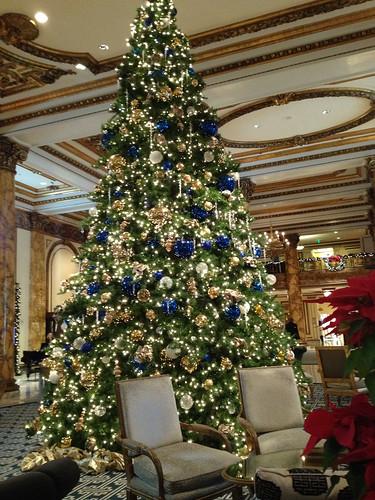 Fairmont Hotel Tree
