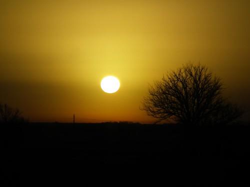 morning trees sky sun nature sunrise ozarks naturegurl01
