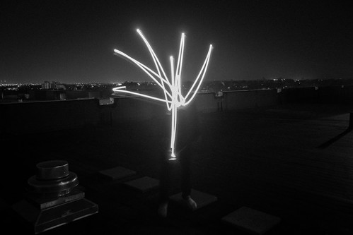 Light tree | by adi_dahiya