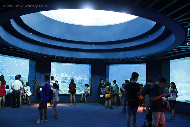 RWS S.E.A Aquarium 620