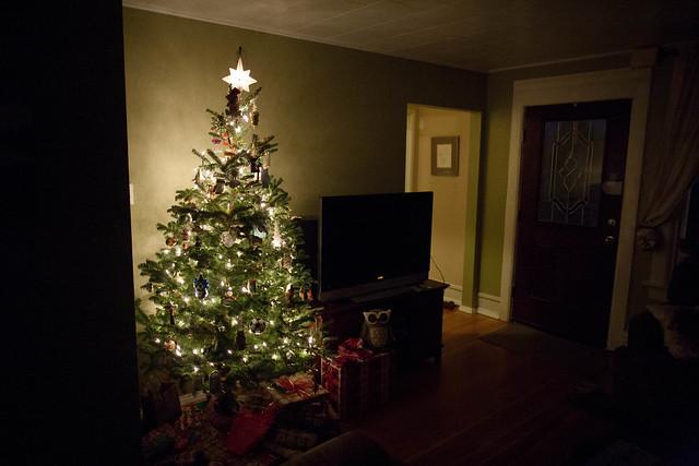 Christmas 2012_20121225_0076.jpg
