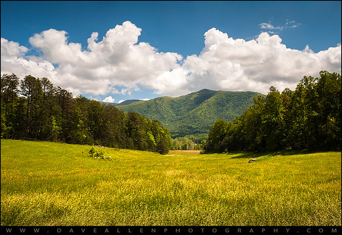 park blue mountains nature field grass yellow landscape outdoors gold nationalpark nc nikon tn cove farm tennessee national peaks smokies appalachia ridges daveallen greatsmokymountains cadescove cades appalachians gsmnp d700