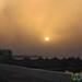 Sunset in the Fayoum Oasis - Egypt